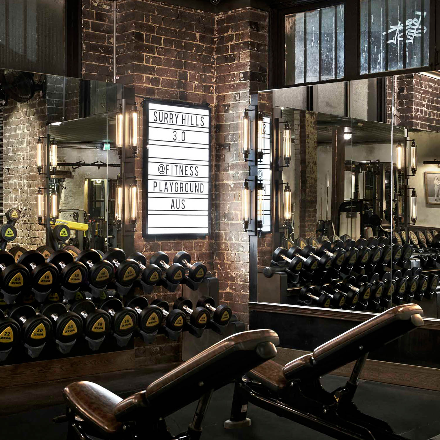 free weights surry hills gym gallery