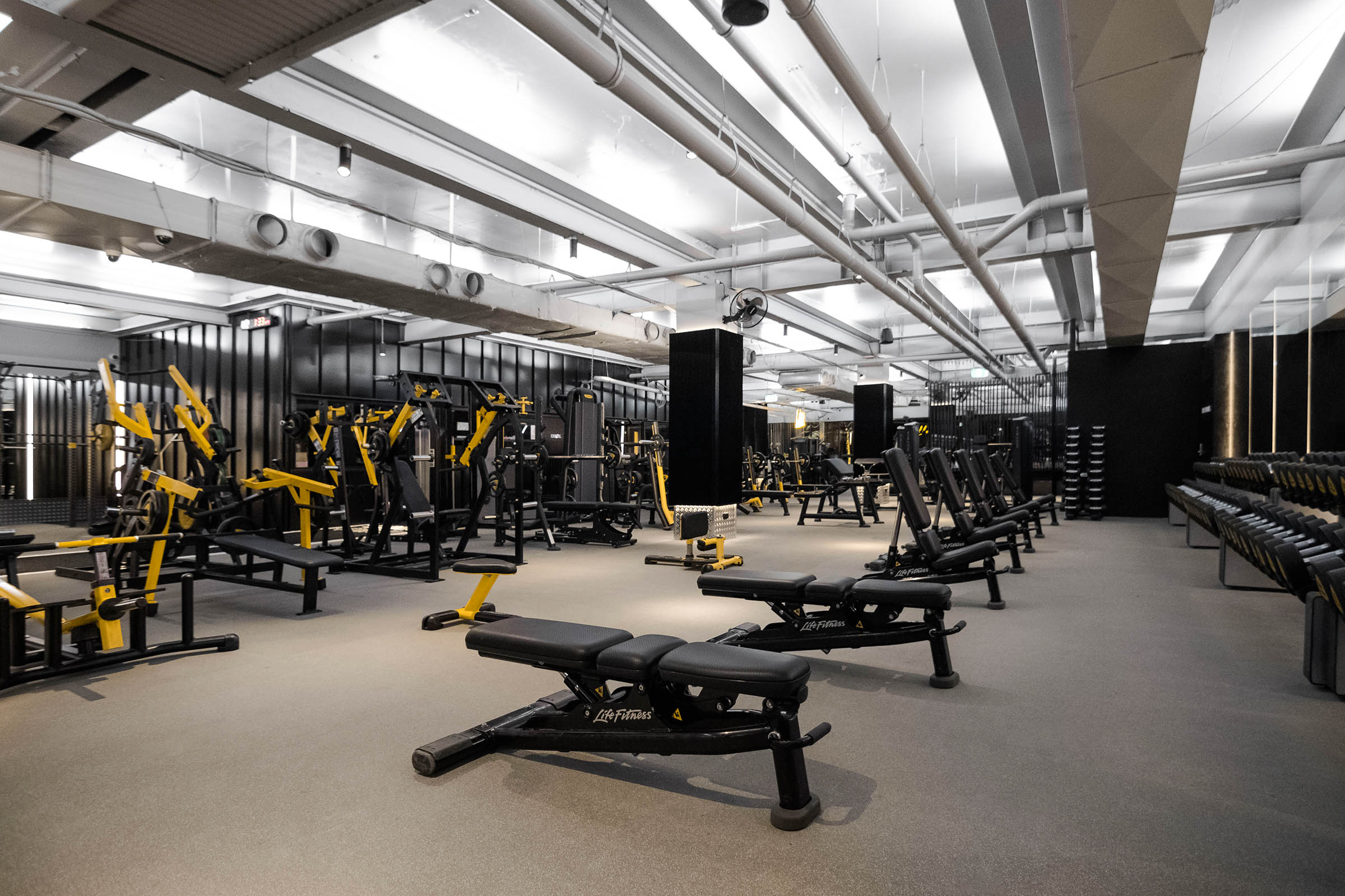 free weights sydney gym marrickville gallery