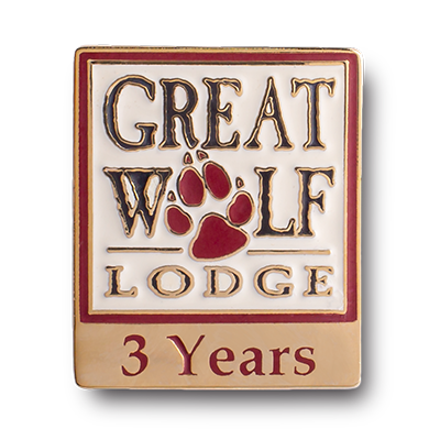 great wolf lodge 3 years hard enamel pin