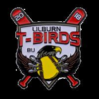 lilburn-t-birds-baseball-trading-pin