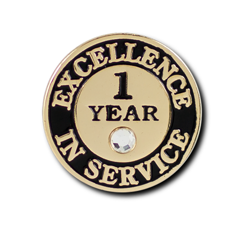 Excellence In Service 1 Year Pin