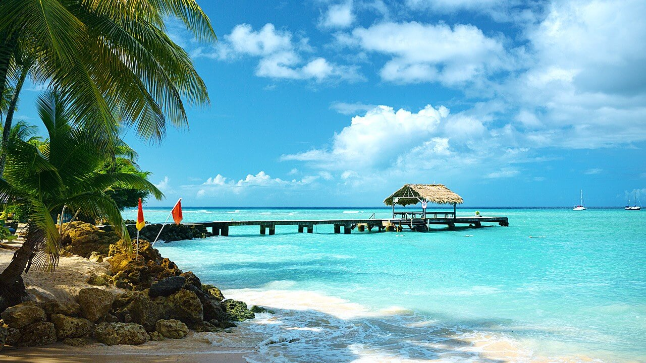Image of a tropical Caribbean Trinidad and Tobago beach, home country of Unioncrate Founder & CEO Shastri Mahadeo