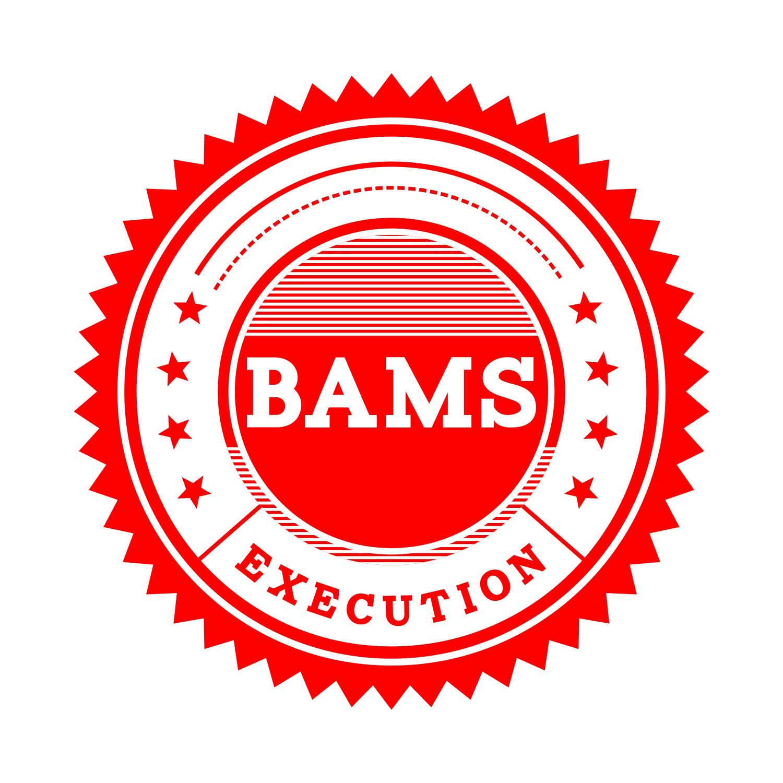 BAMS Course