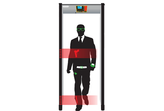 WTSX-I Walk Through Metal Detector