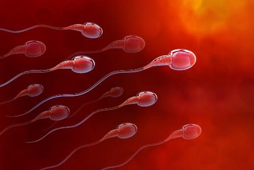 Tinh trùng có màu đỏ hồng ở nam giới