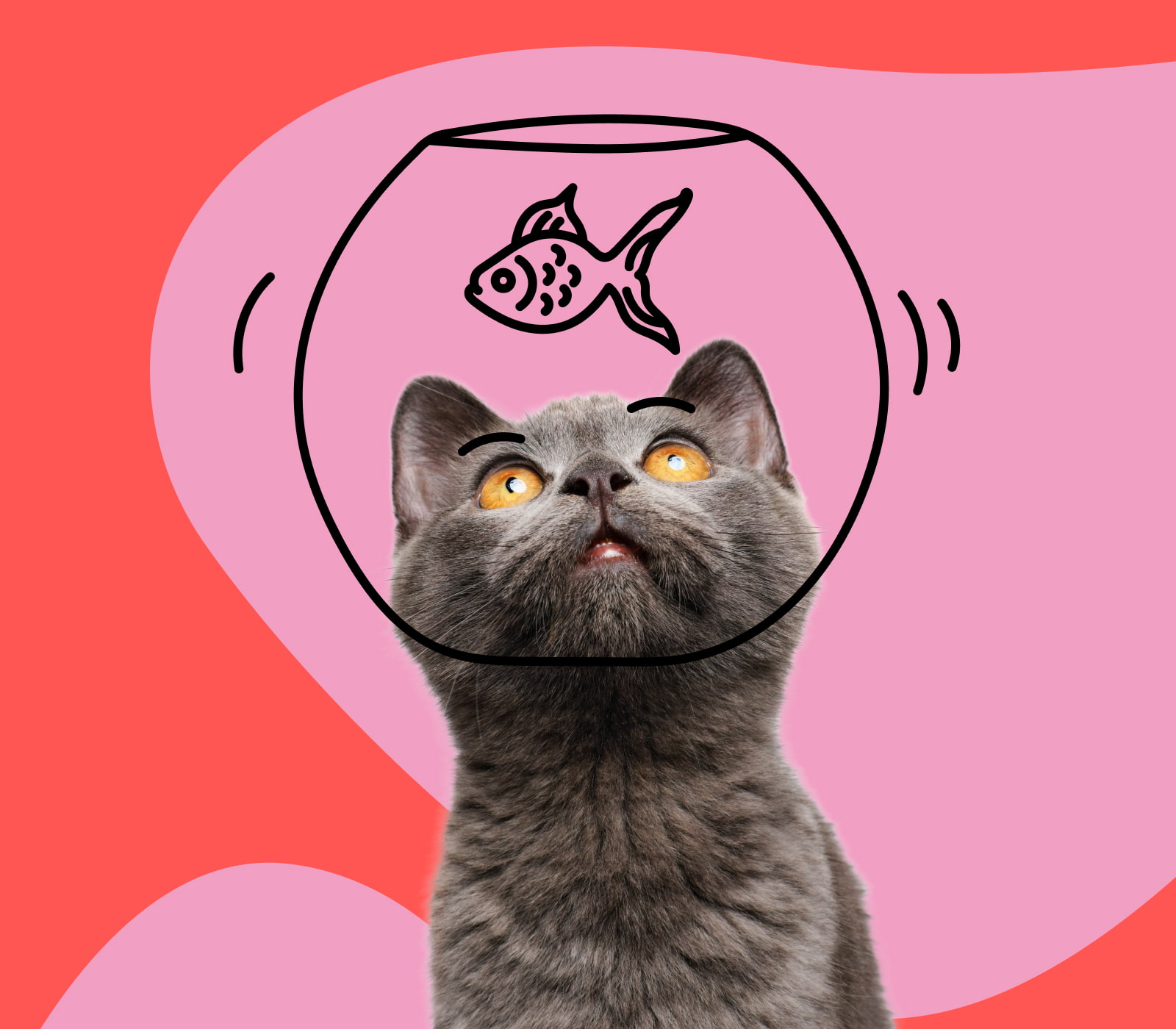 A cat with his head in a fishbowl looking up at a fish