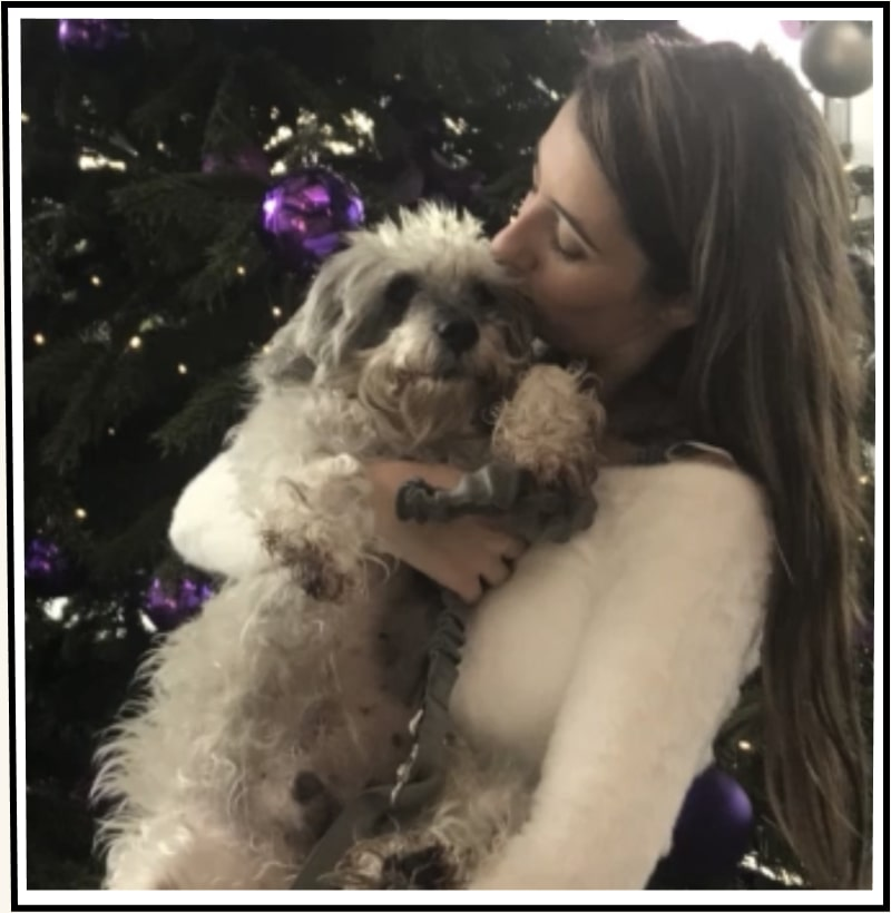George the schnoodle getting kisses from his mom Lauren