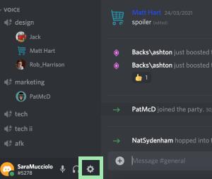 Discord User Settings