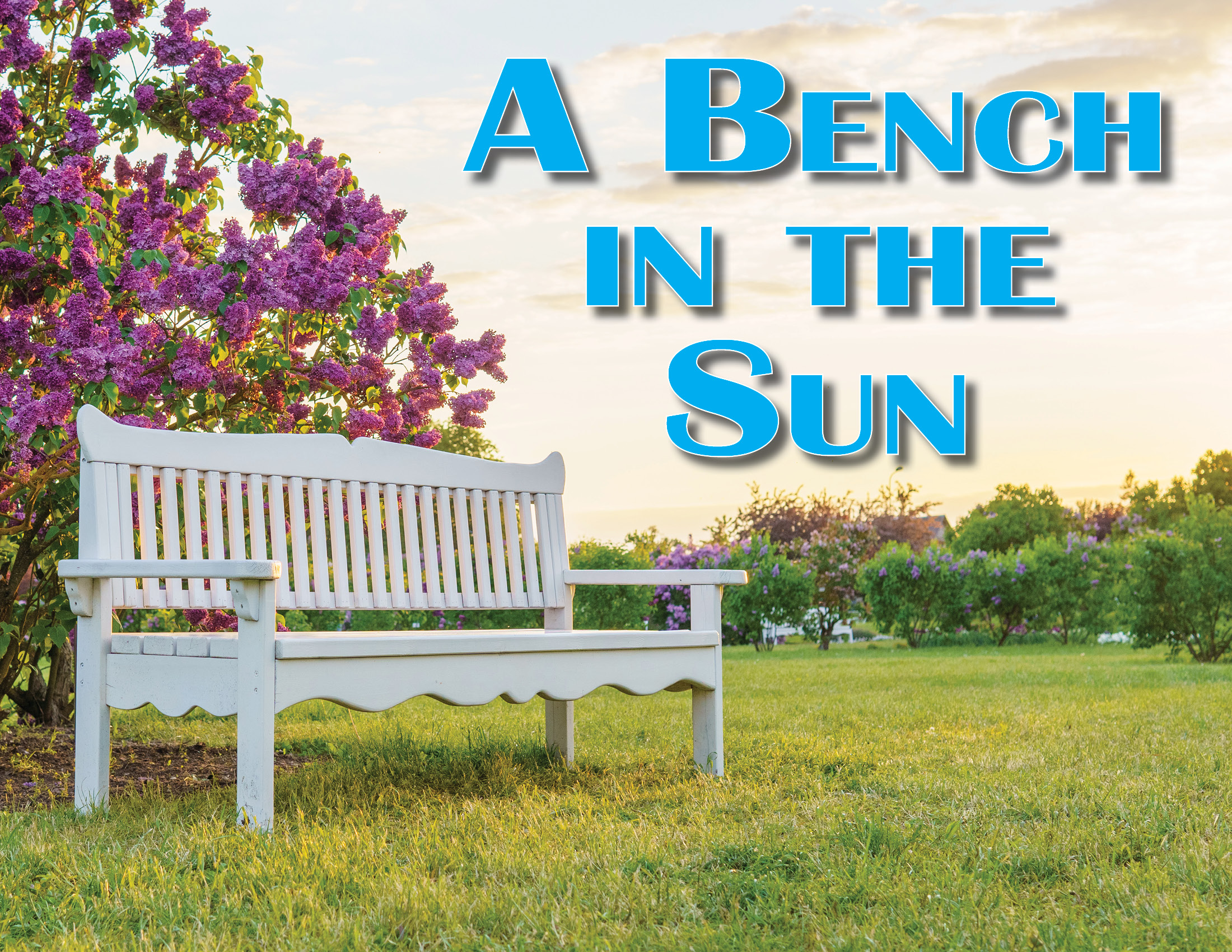 A BENCH IN THE SUN, a comedy by Ron Clark