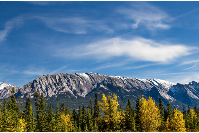 Snow capped mountain range with trees in the foreground