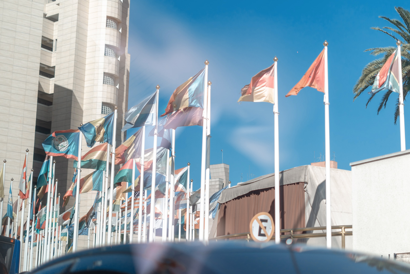 A cluster of flags outside of the United Nations