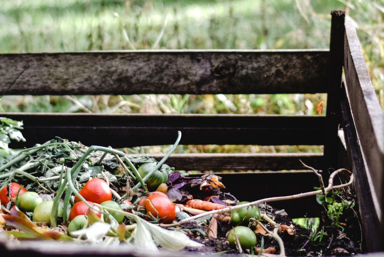 A backyard compost pile which is a environmentally-friendly way to reduce your carbon footprint.