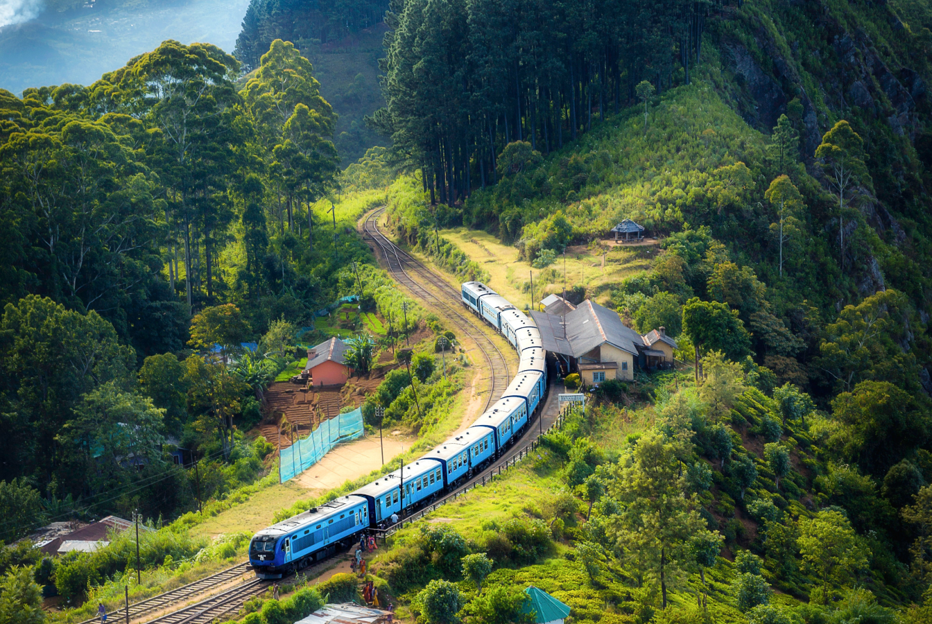 A train stopped at a station near a forest