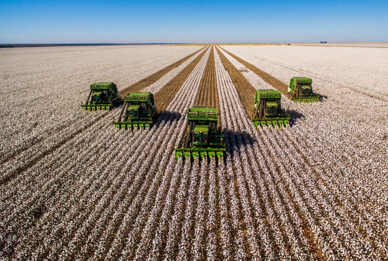 5 combines combining a field of crops