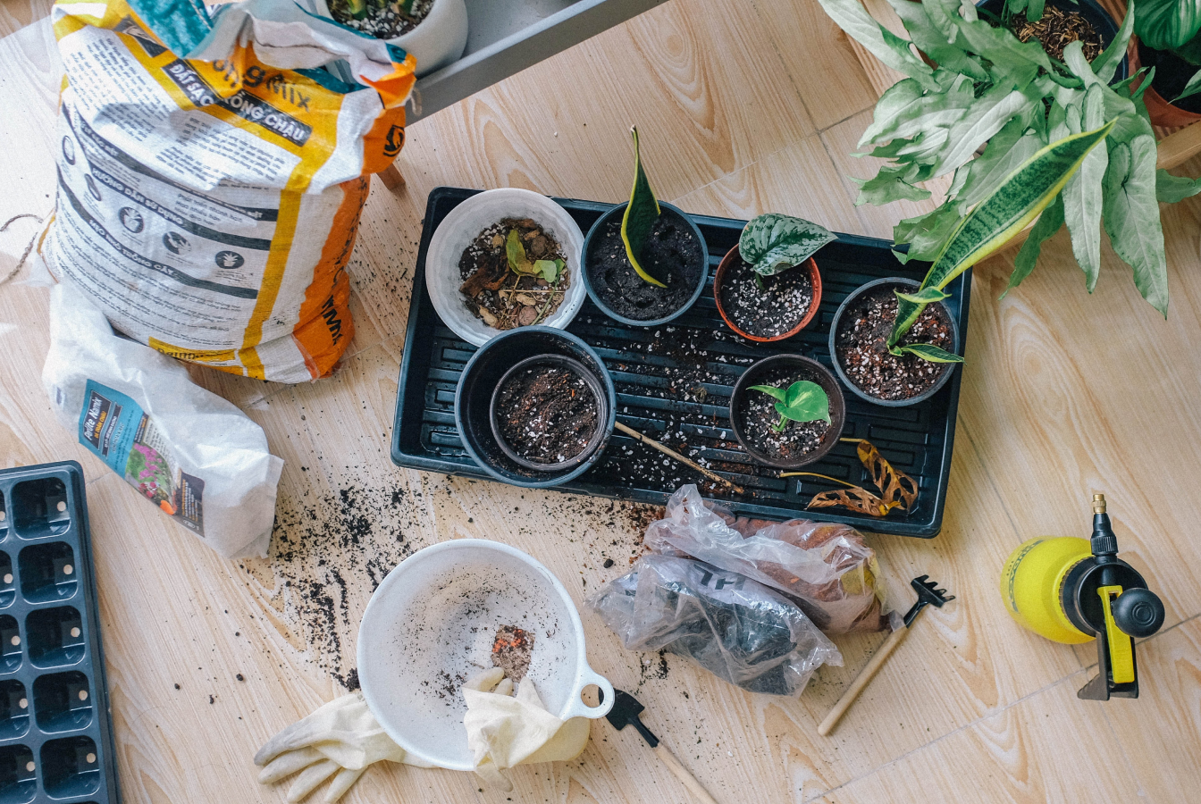 A kit to grow your own plants and herbs at home.