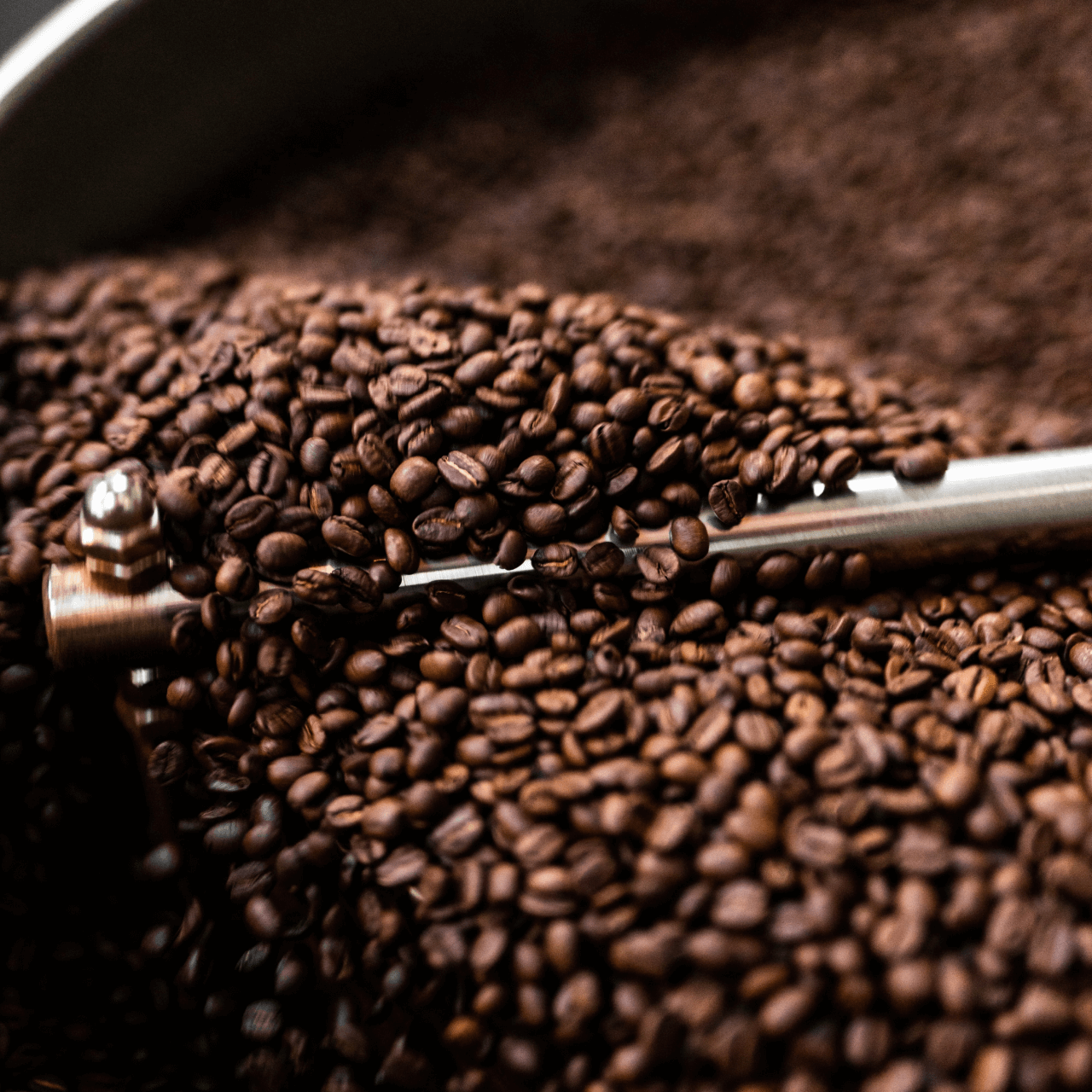 The Surprising Carbon Footprint of Coffee — and What We Can Do to Fix It