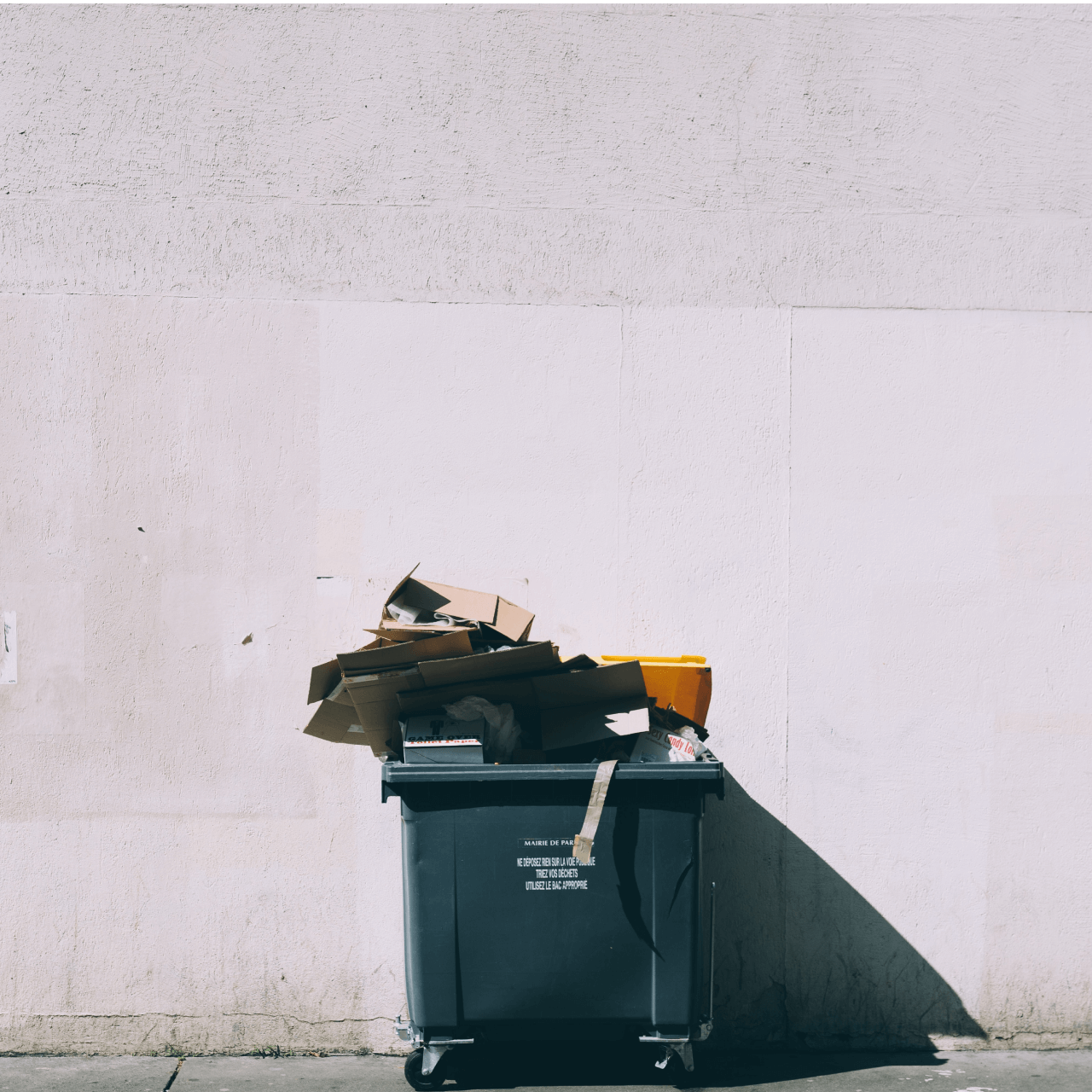 The Essential Recycling Guide You Didn't Know You Needed