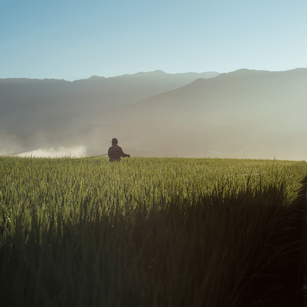 The Promised Land: 5 Ways Farmers Are Fighting Climate Change