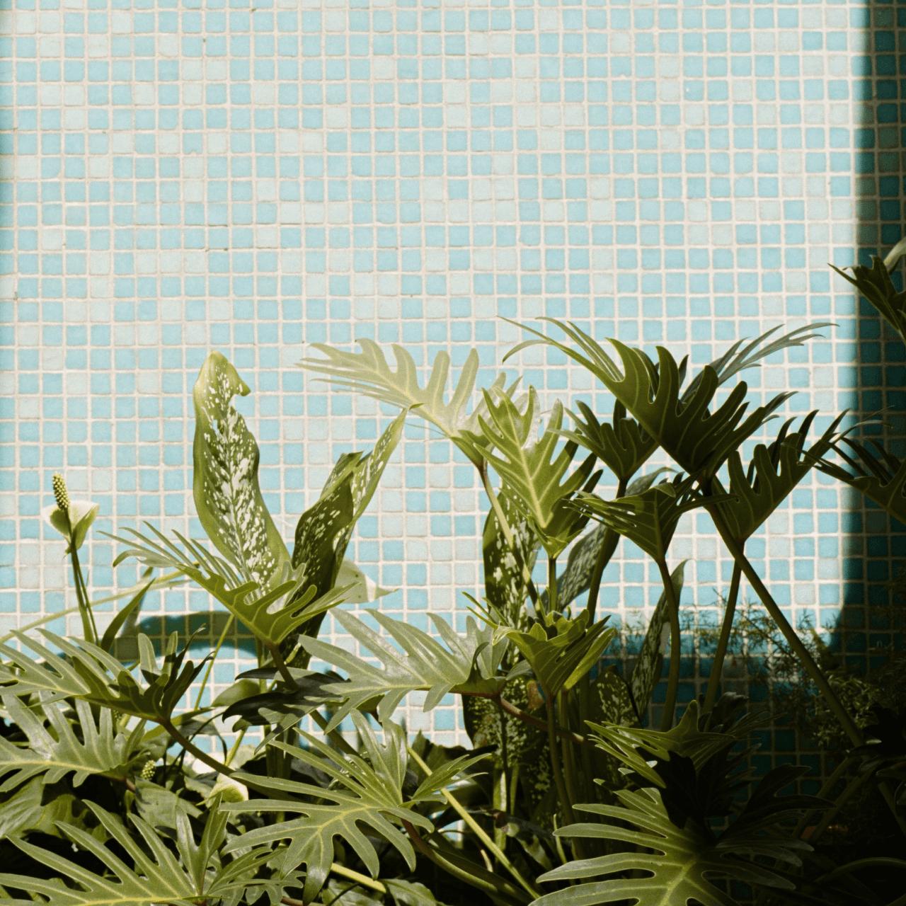 12 Surprisingly Effective Ways to Make Your Bathroom More Eco-Friendly