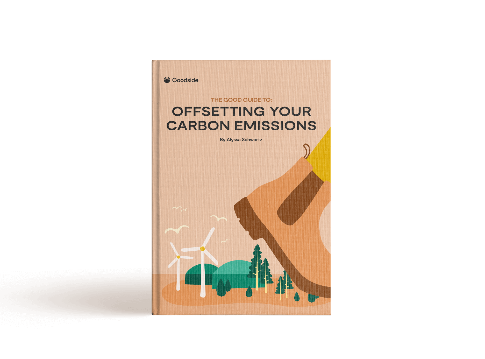Offsetting Your Carbon Emissions