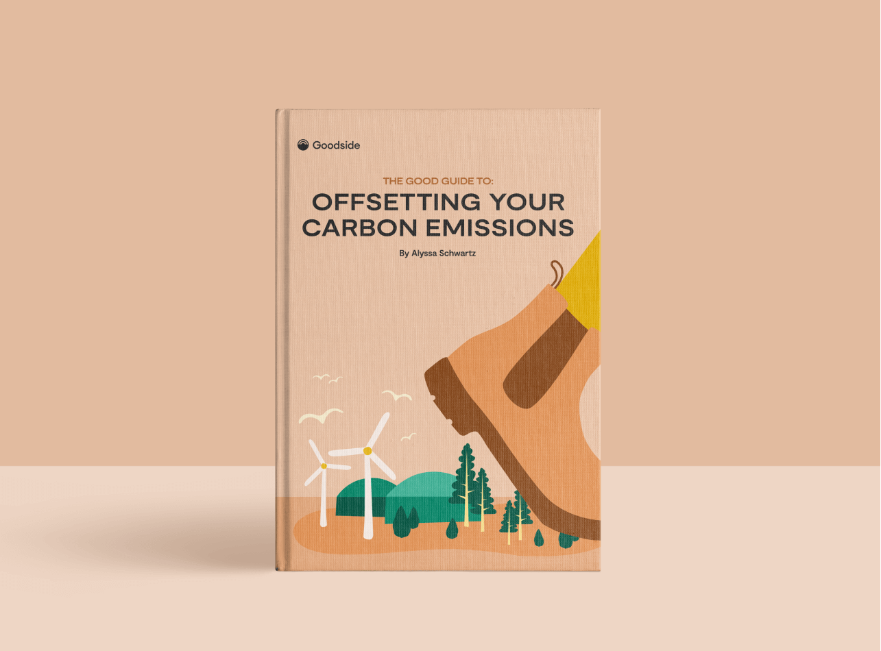 Get the Good Guide to Carbon Offsetting (Free Download)