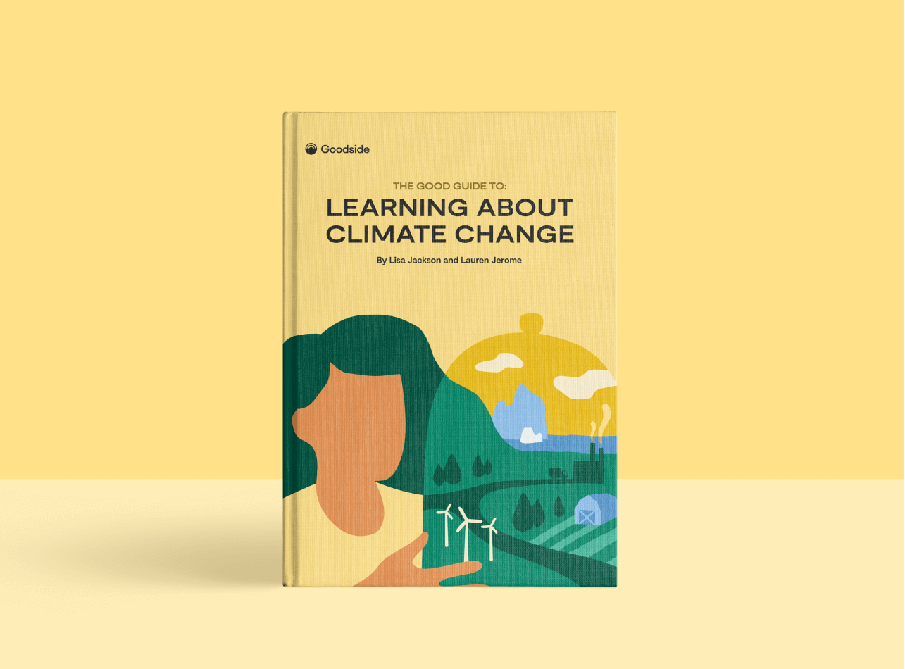 Get the Good Guide to Learning About Climate Change (Free Download)