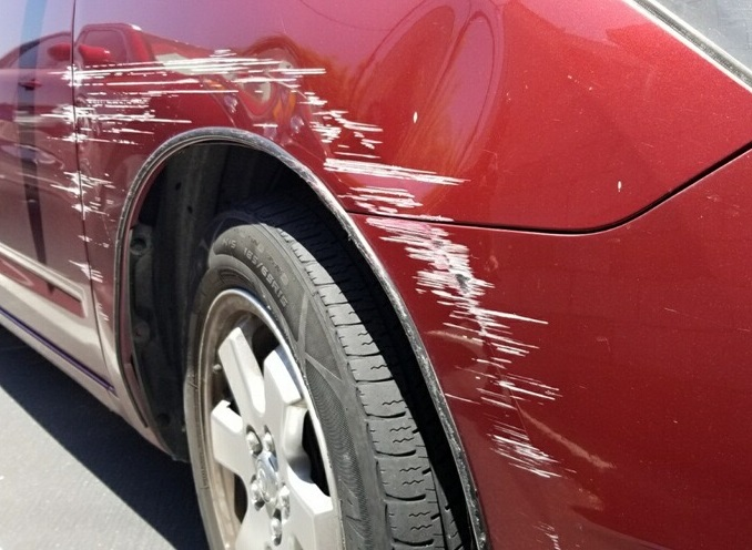 Prius fender and bumper damages
