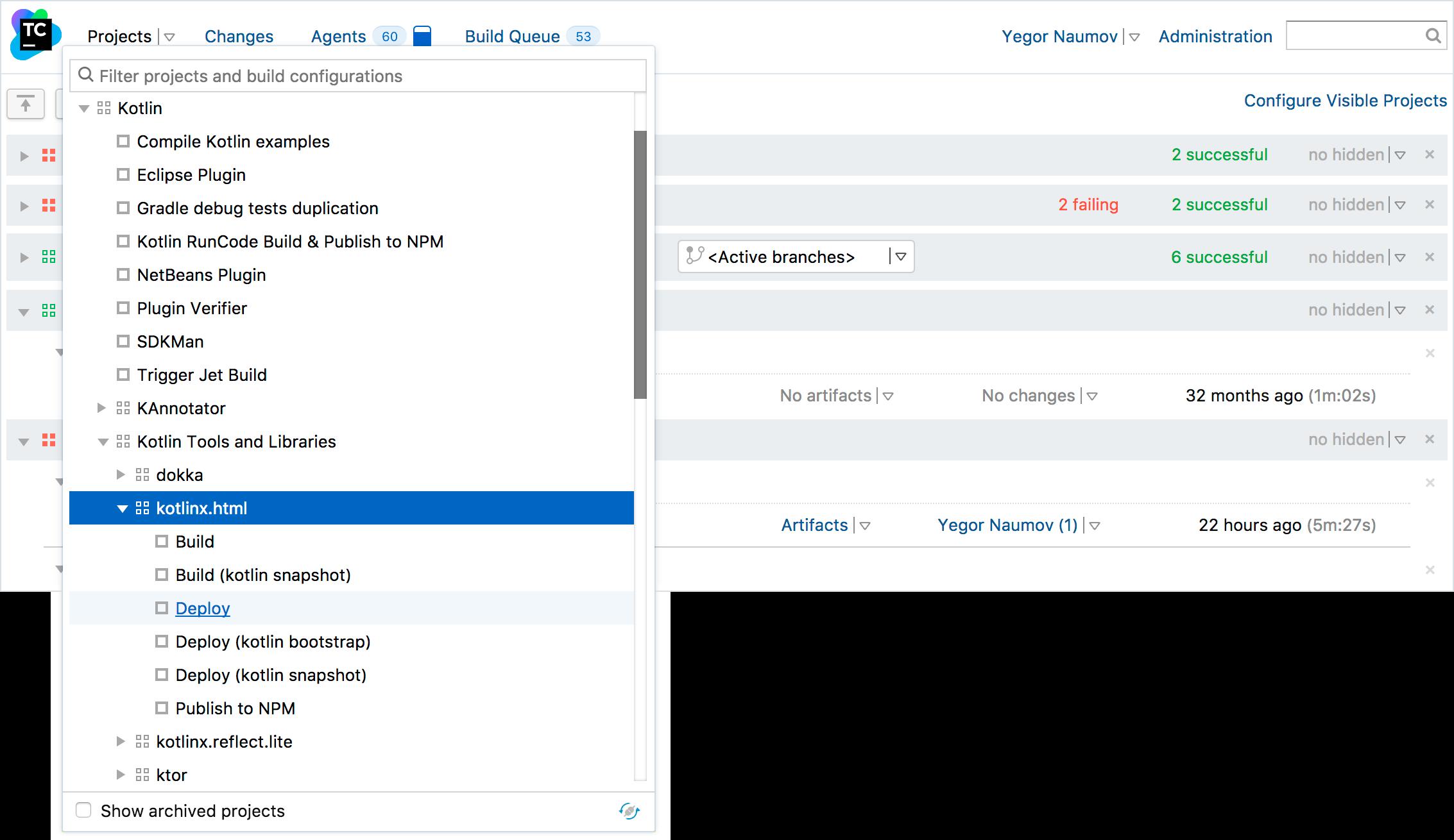 TeamCity Interface