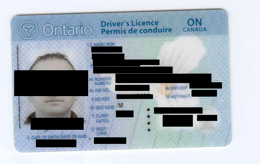 Redacted screenshot of a drivers license scan contained in the Level One data.