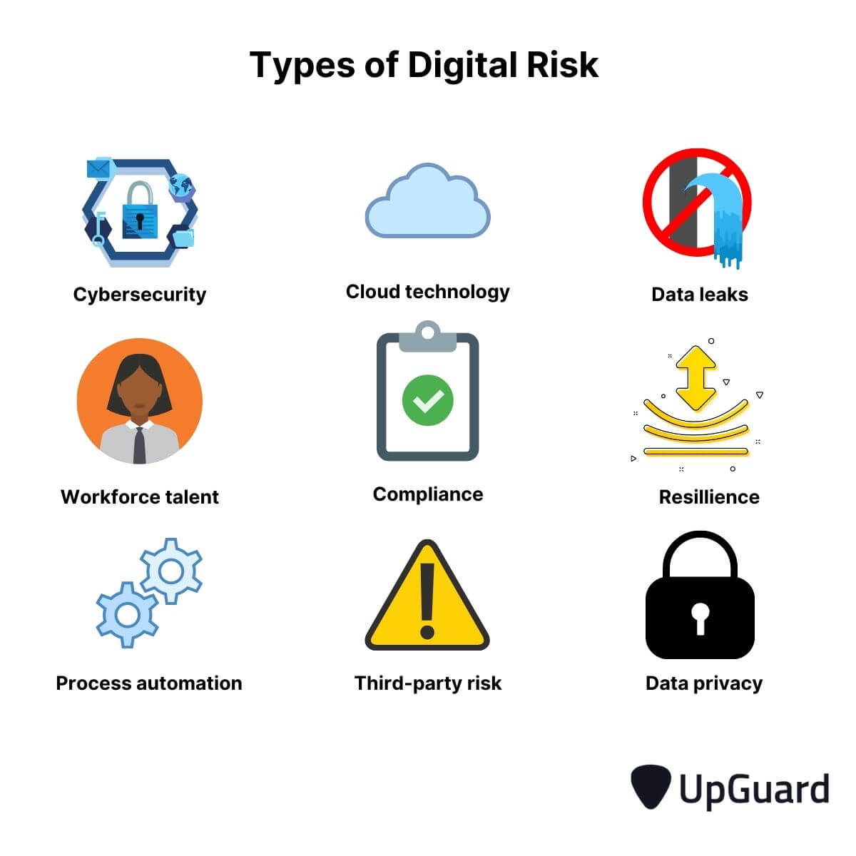 types of digital risk