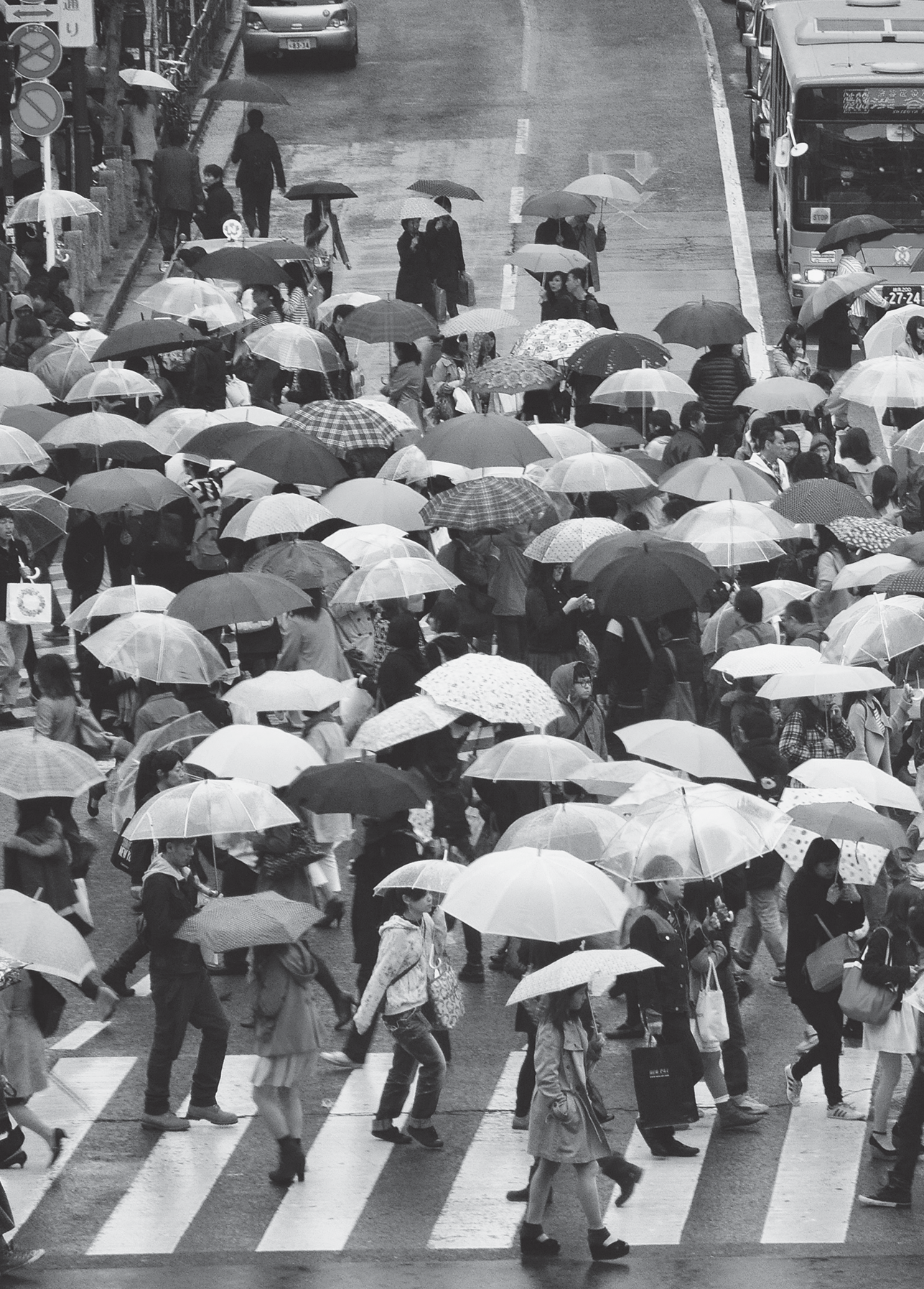 people crossing a street with umbrellas