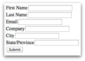 Salesforce Web-to-Lead Form