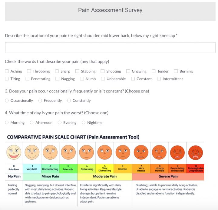 Pain Assessment Survey