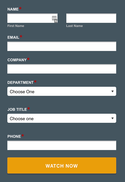 Lead Generation Form with Strong CTA Button