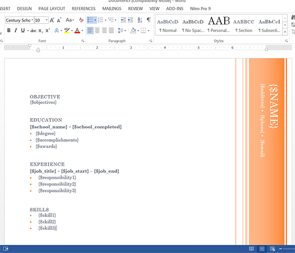 Word Document Template