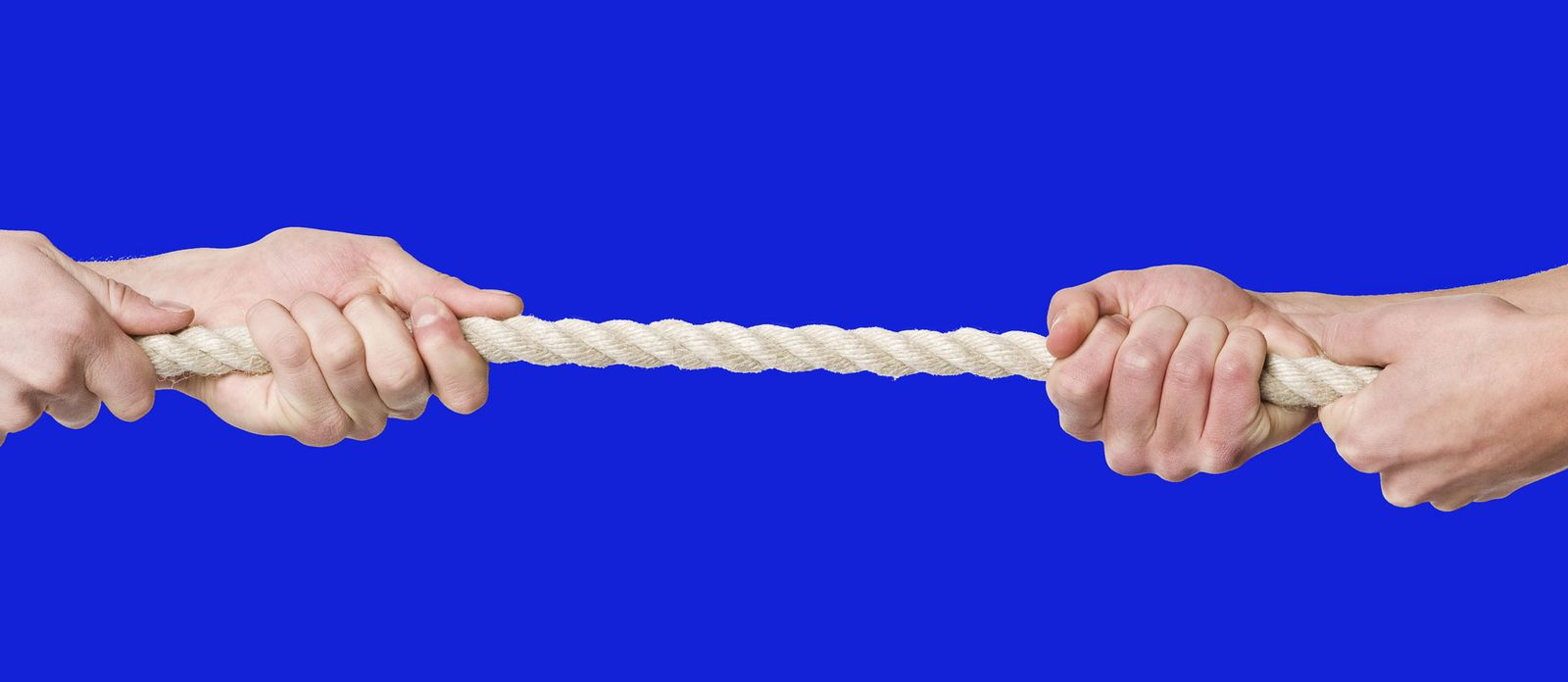 Tug of war. Win a Bidding War: How to Prepare and Get the House You Want.