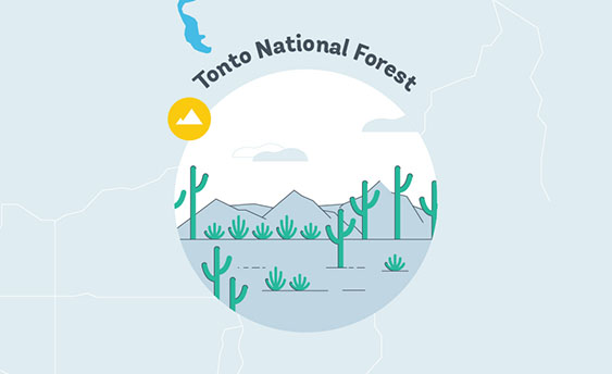 tonto national forest graphic