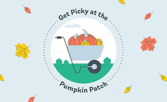 pumpkin patch graphic