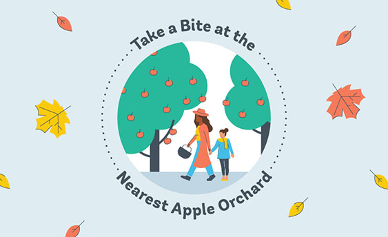 apple orchard graphic
