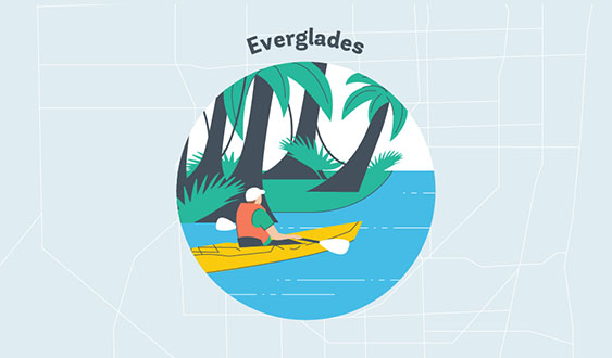 everglades graphic