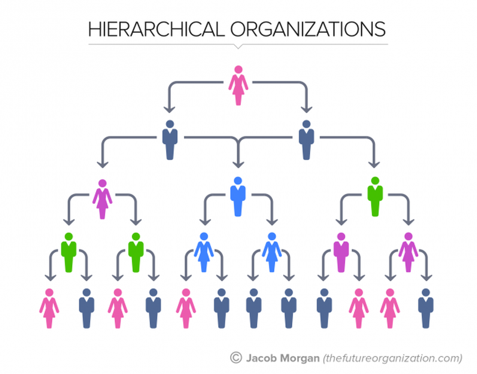 The death of hierarchy | peopleHum