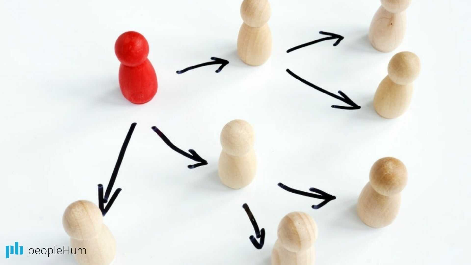 """The """"process roles"""" in team meetings"""