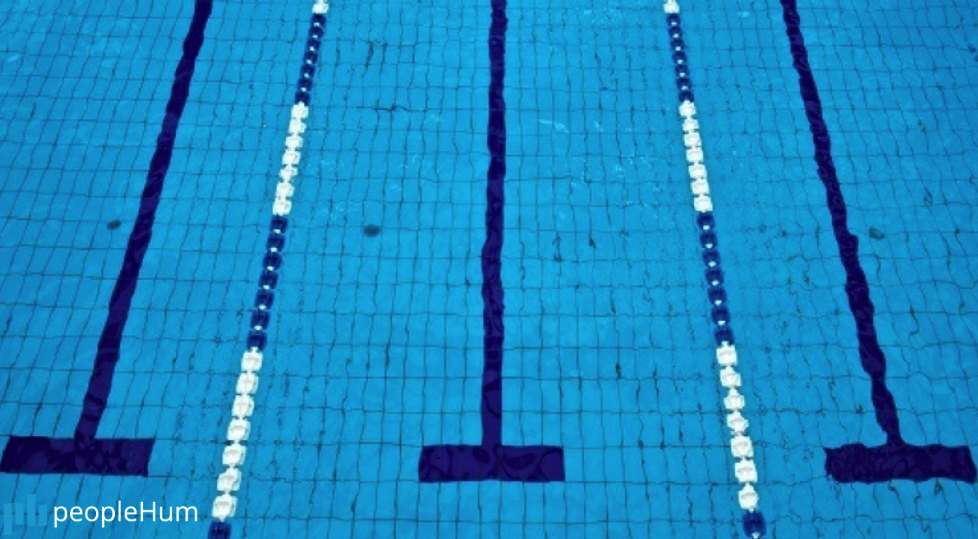 The only three swim lanes that matter to a business