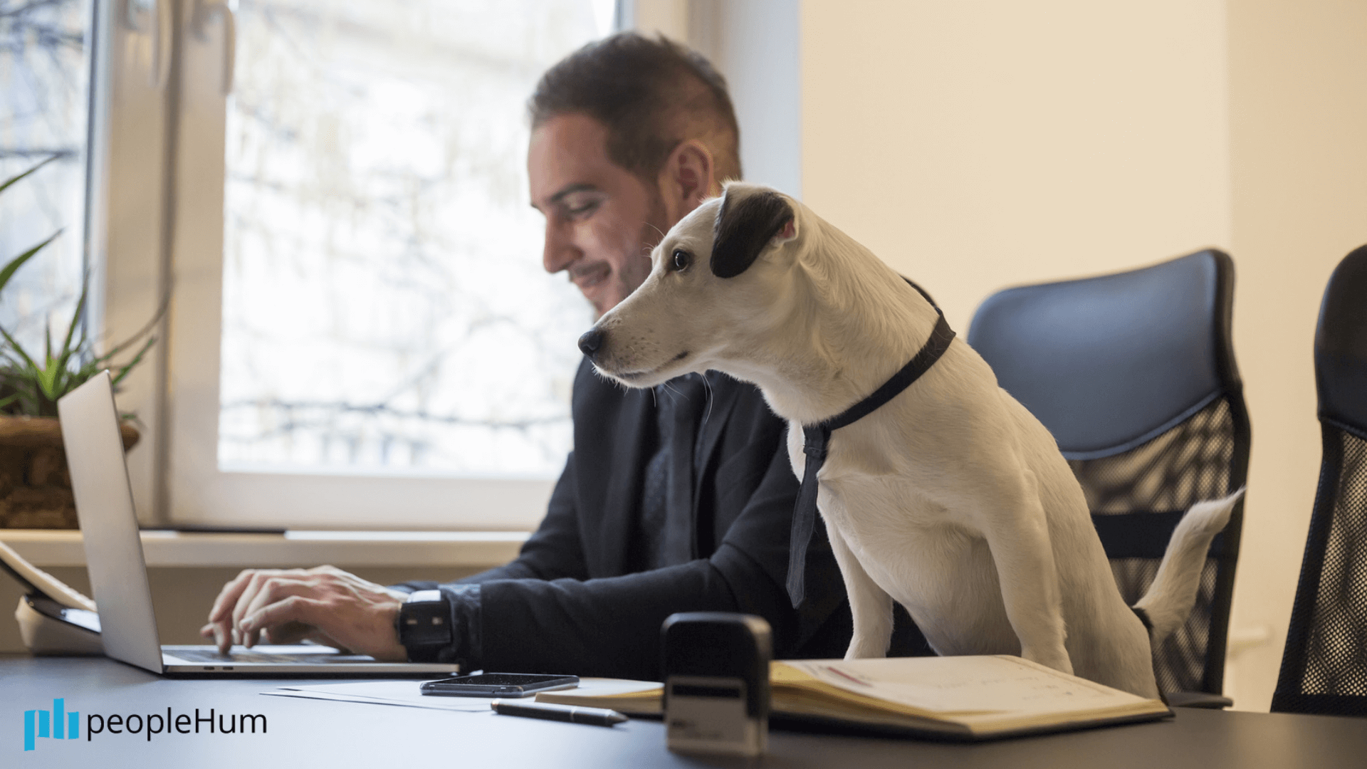 Office dogs don't drive employee engagement. A properly executed strategy does.