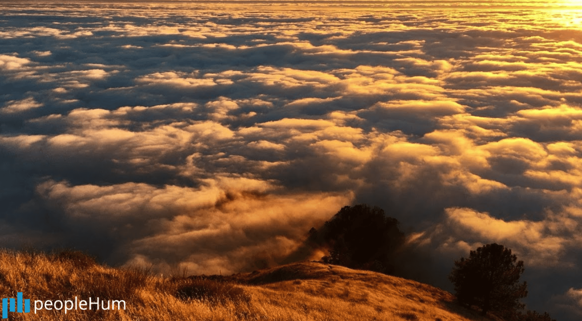 Wisdom from above the clouds