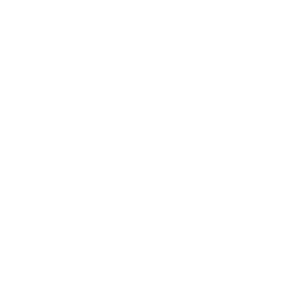 The Pleiades Project