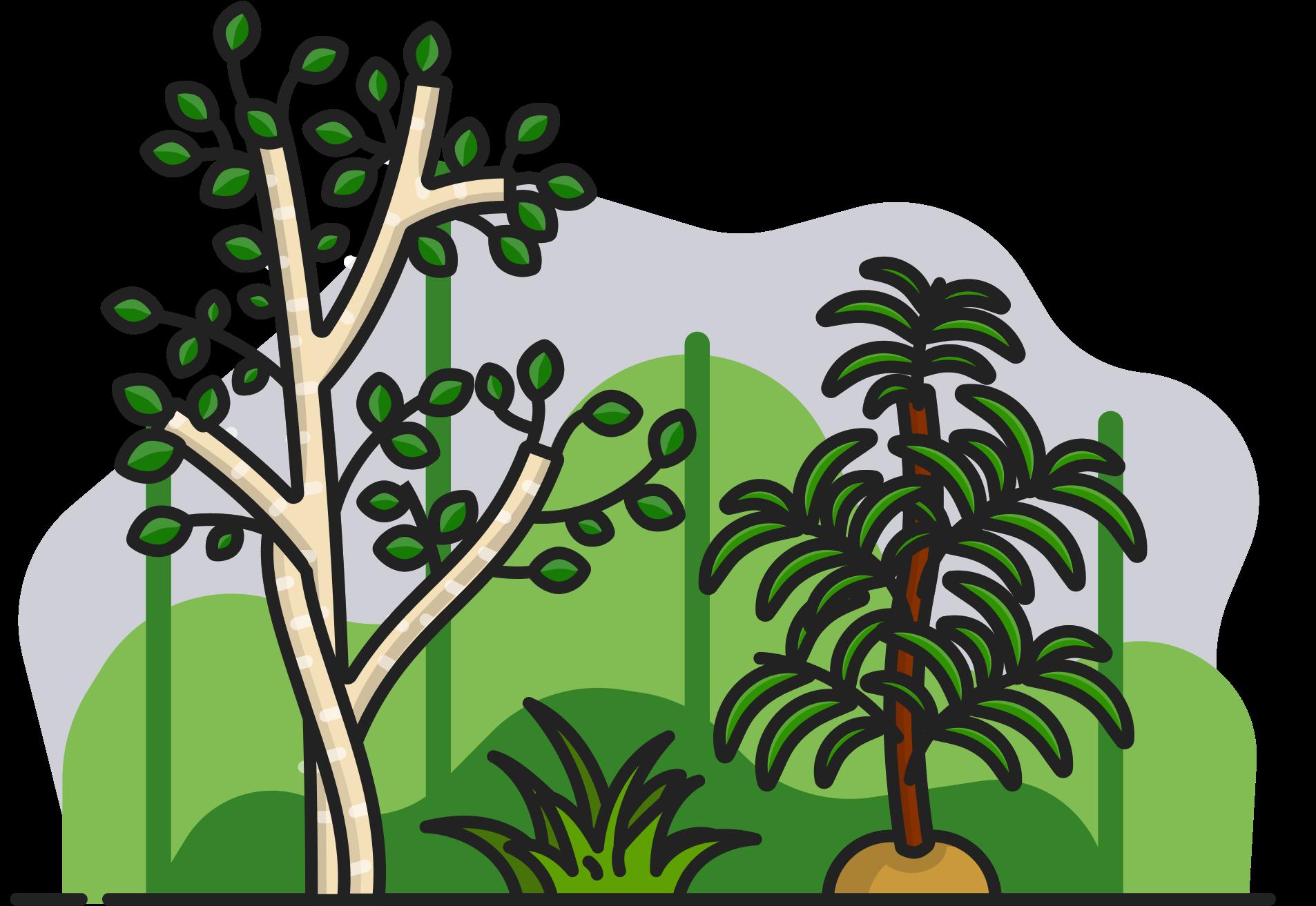 Illustration des arbres, des feuilles et de l'herbe