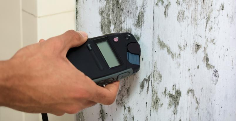 scanning mold