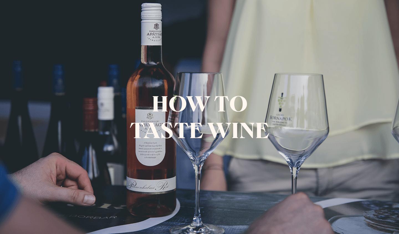 The Basics of Wine Tasting
