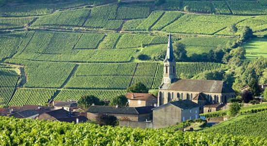 Five red villages of Burgundy